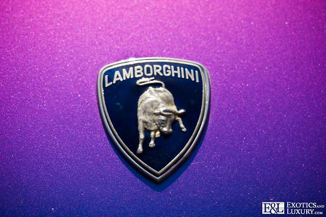 Lamborghini Logo Emblem Badge Image By Www Exoticsandl Flickr