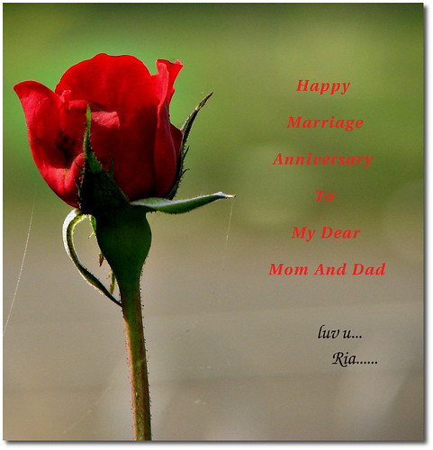 happy marriage anniversary to my dear mom and dad