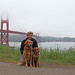 Golden Gate Bridge with The Goldens
