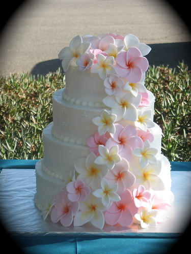 How To Make Frangipani Flowers For Cakes