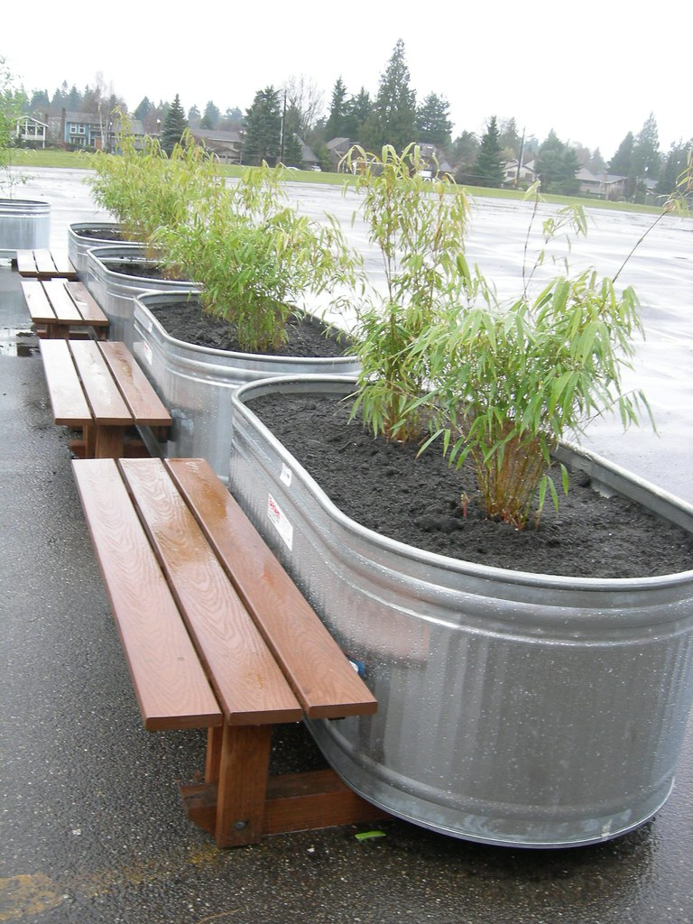 Row Of Bamboo Bench Planters Greenwalks Wordpress Com