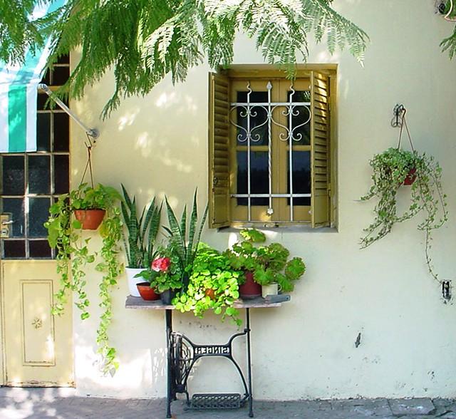 ideias de mini jardim:Mini jardim