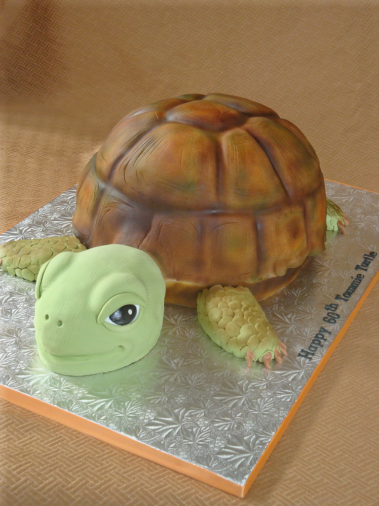 Tommie Turtle Cake Giant Turtle Cake For A 60th Birthday
