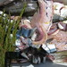grilling the fish, Talamone