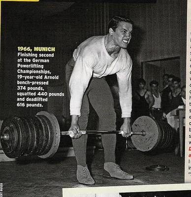 The new encyclopedia of modern bodybuilding free