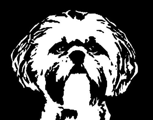 Shih Tzu Black Amp White Stencil Dog Art Print Flickr