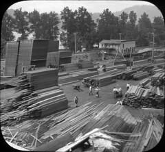 Lumber ready for shipment