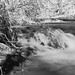 Monatiquot River falls