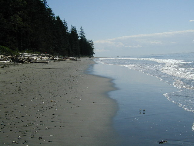 victoria02h13 China Beach, Vancouver Island BC 2002 | Flickr
