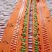 Orange  Poppy Zippers