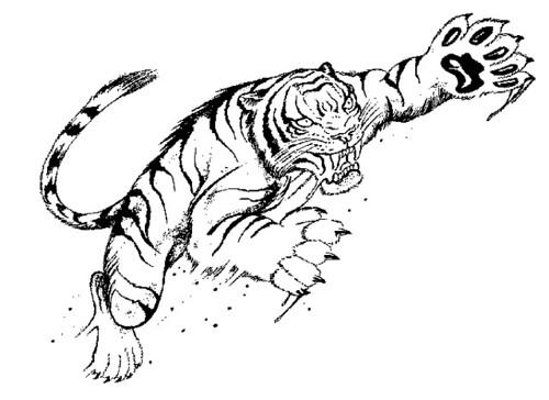Tigre 2 tattoo for Immagini tigre da colorare