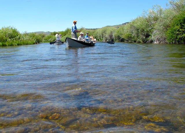 Fly fishing the beaverhead river montana fly fishing on for Beaverhead river fly fishing