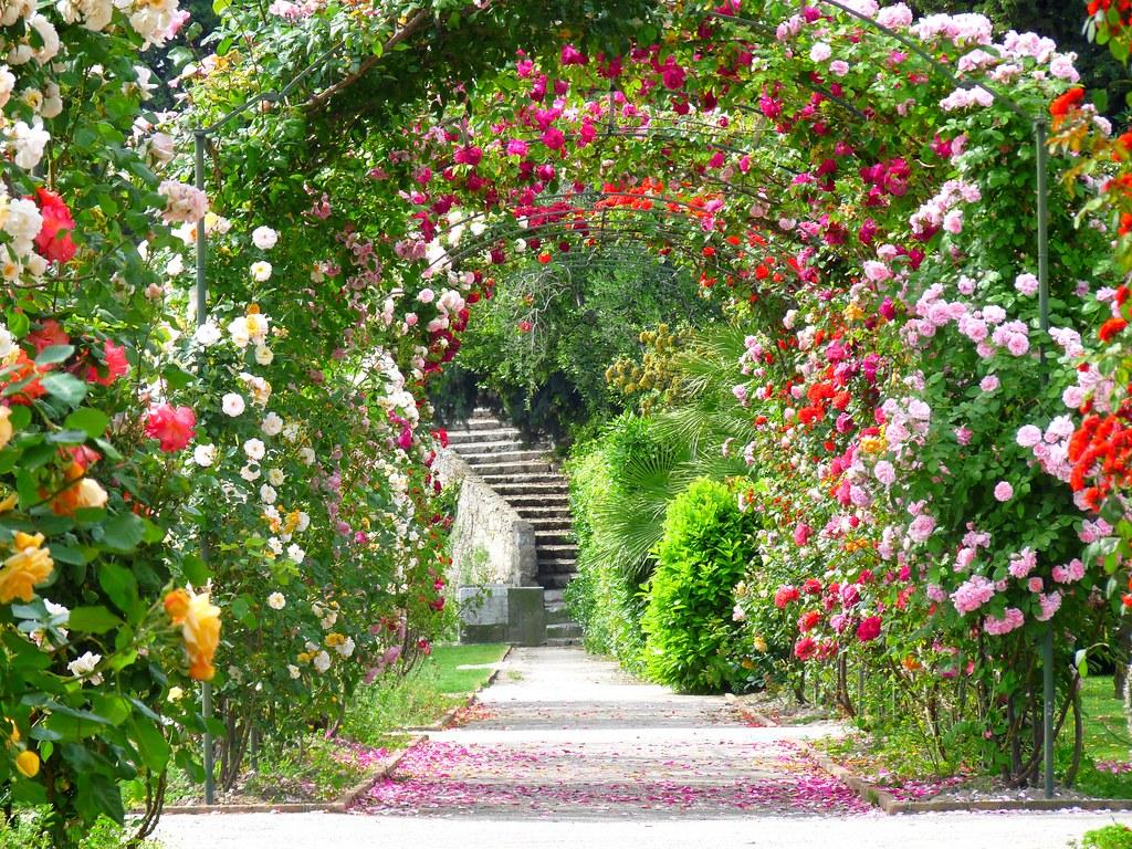 Jardin monastere de cimiez caroline b flickr for Jardin 4 moineaux