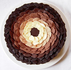cake for andy goldsworthy | by distopiandreamgirl