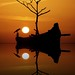 Sunset at Calicut .In 100 Galleries.