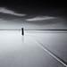 Square VI - Line to the Horizon