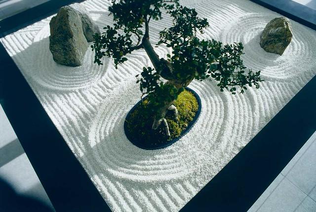 Tisch mit bonsai und steinen design hotel austria zen for Whirlpool garten mit bonsai wohnung