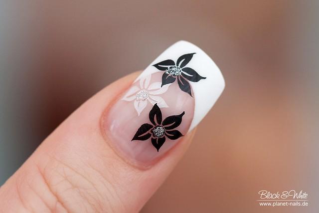 Nailart french black white flower stempelwiese flickr nailart french black white flower by stempelwiese mightylinksfo