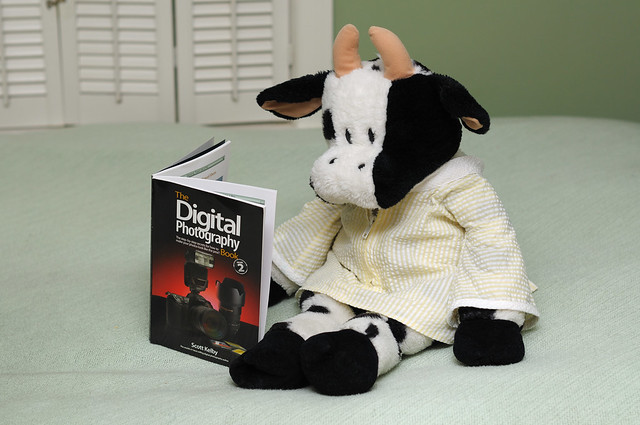 moo studying photography in yellow sleeping suit flickr