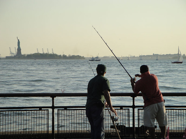 Green summer in nyc fishing in new york harbor learn to for Fishing in new york