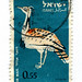 Israel Postage Stamp: Chlamydotis