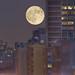 Jul 9, 2009 - Full moon over 96th St.