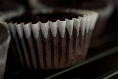 Chocolate Salted-Caramel Mini Cupcakes