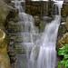 Taman Burung Kuala Lumpur - Stream