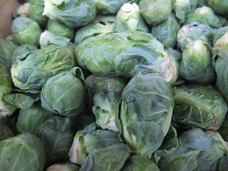 Brussels Sprouts from Rhoads Farm Market | by swampkitty