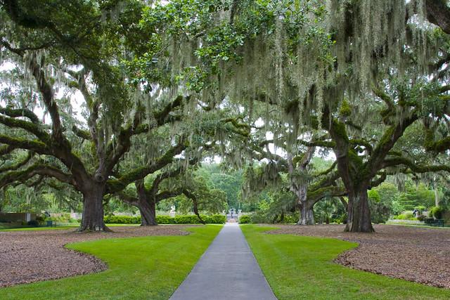 Oak alley central pathway through brookgreen gardens in so flickr for Brookgreen gardens south carolina