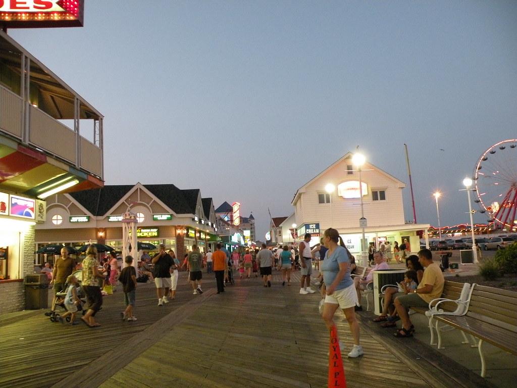 Ocean City Md Shark Sightings