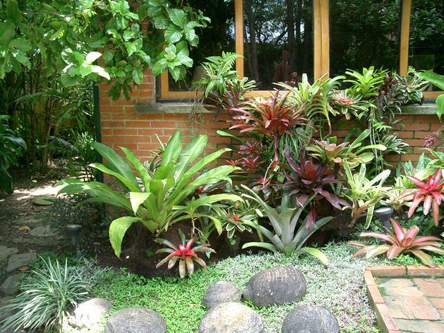 Jardin de bromelias marcelo walter flickr for Casa con jardin valencia
