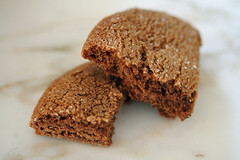 non-fat gingersnap | by David Lebovitz