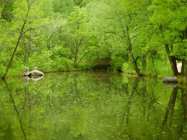 Fishing along the boulder creek path boulder co summer for Boulder creek fishing