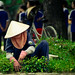 Cleaner of the imperial city of Hue, Vietnam