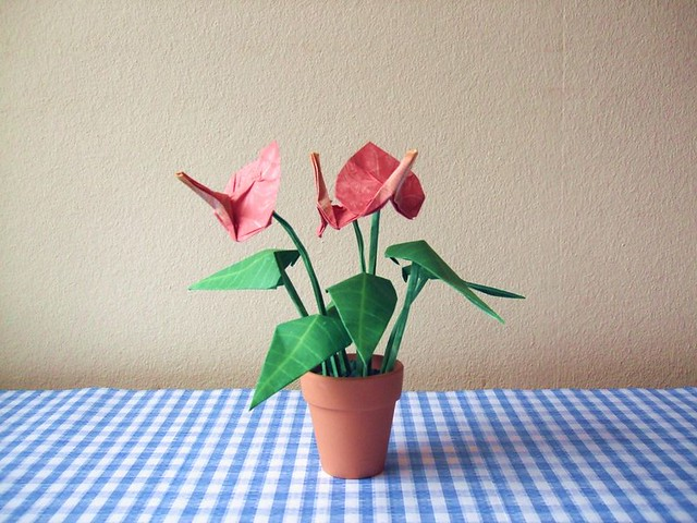 Tiny origami anthurium realistic looking origami flowers b flickr tiny origami anthurium by joostlangeveld tiny origami anthurium by joostlangeveld mightylinksfo