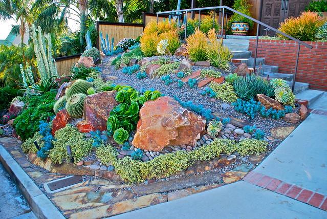 Encinitas Succulent Garden Flickr Photo Sharing