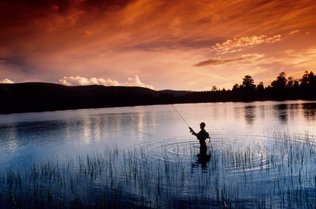 Fly fishing uinta mountains frank jensen matthew for White mountain fishing report