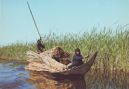 Marshes-Iraq 1979