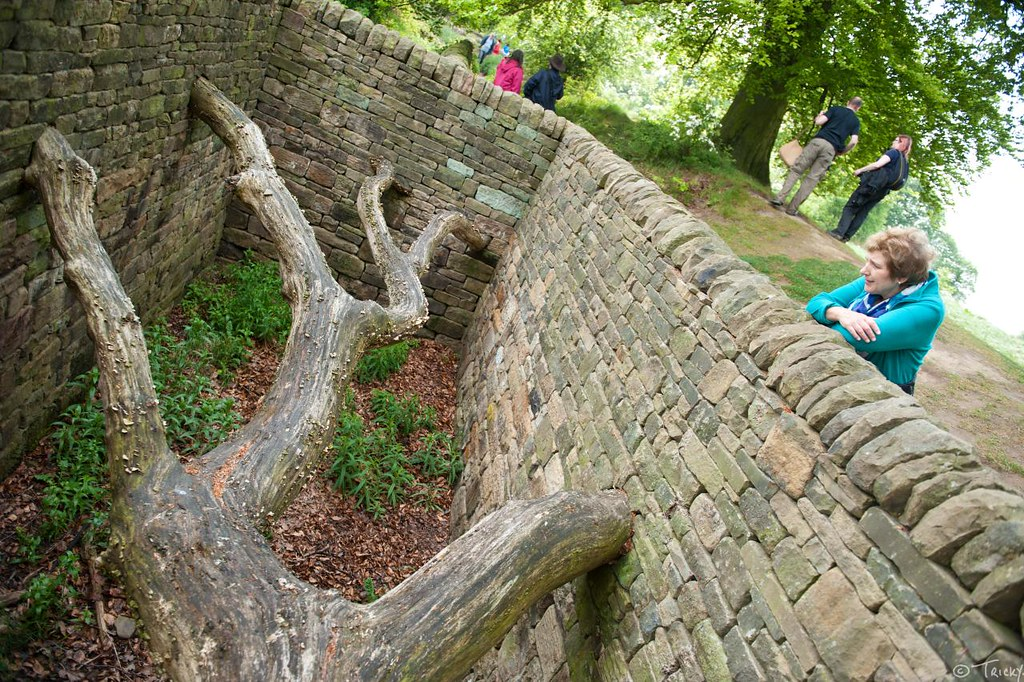 Hanging Trees By Andy Goldsworthy Yorkshire Sculpture Pa