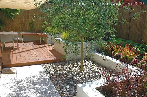 Mediterranean style courtyard flickr photo sharing for Contemporary courtyard garden designs