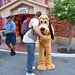 Kurtie hugging Pluto in Toontown