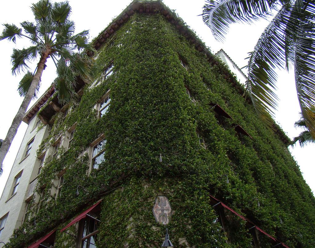 Van Dyke Cafe Lincoln Road Miami Beach