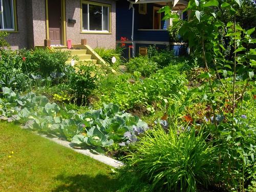 Kitchen With Garden Decor