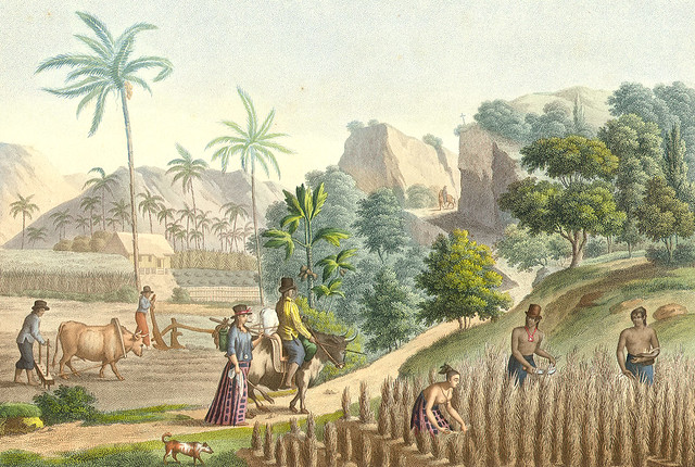 the role of farmers and herdsmen in society and agriculture in the ancient world 300 bc book 'indica' by megasthenes dispels caste theories of  those engaged in agriculture and animal  brahmins), farmers, herdsmen,.