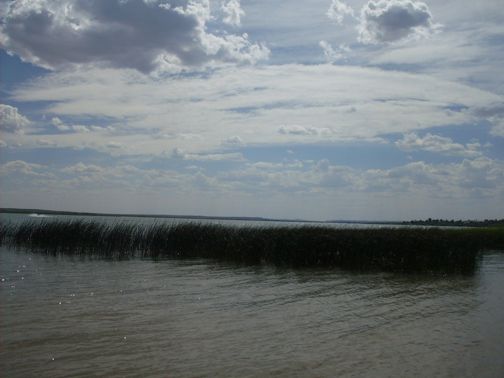 Ute lake state park in new mexico really an oasis in for Ute lake fishing report