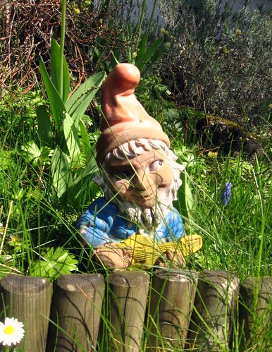 Garden Gnome Doesn 39 T He Just Look Evil Max Of