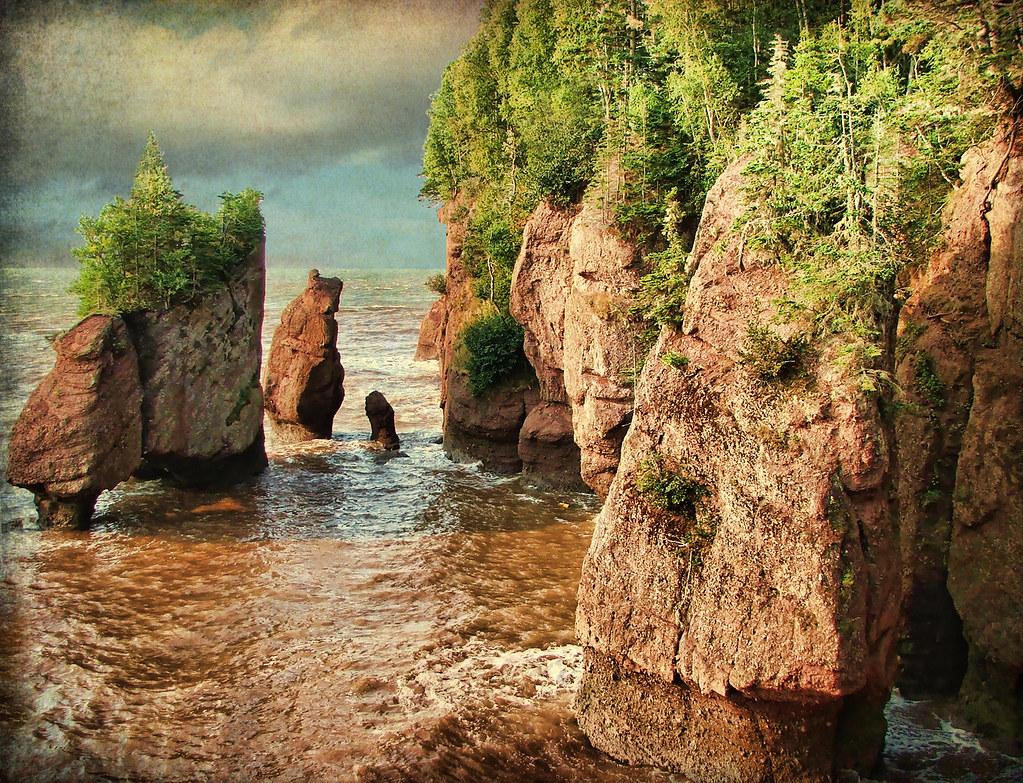 Hopewell Rocks  Nb  High Tide