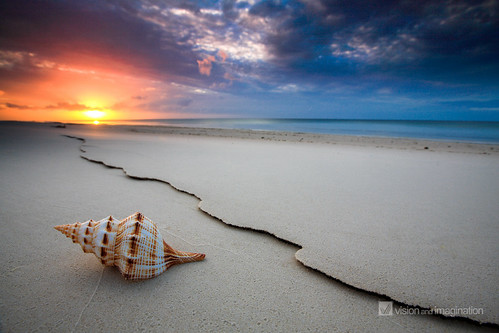 The Shell | by Garry - www.visionandimagination.com