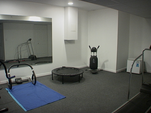 Home gym small workout room in basement imani rashid for Small home workout room
